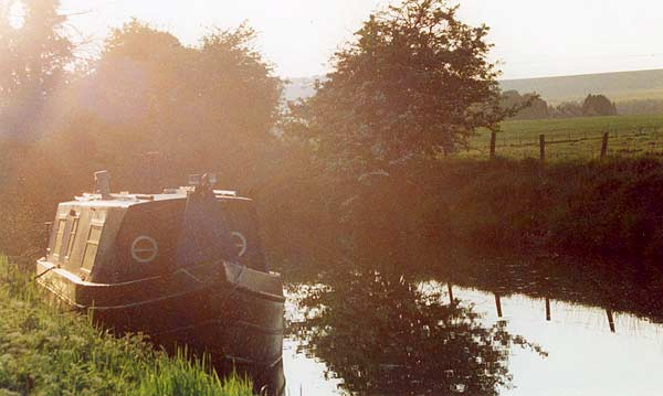 Summer evening near Horton Bridge