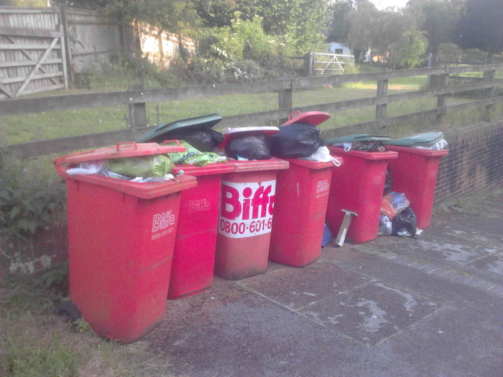 Overflowing bins at Wootton Rivers